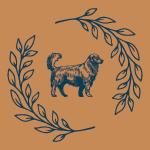 wheel dog advanced gold title earned