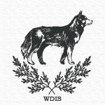 wheel dog intermediate silver title earned