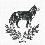 wheel dog intermediate silver title qualifier